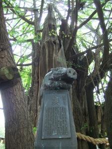 銀杏の神木の前に亥の彫刻