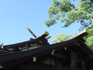 青空を背景にして社殿の屋根と木の梢