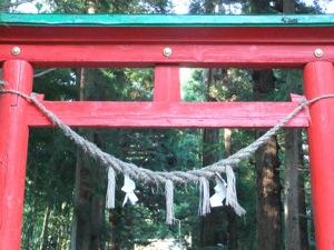 朱塗り鳥居と注連縄の向こうに、杉と参道