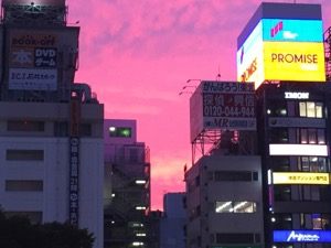 ビルの隙間から紫色の夕焼けが見える