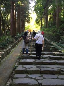 家族が並木のある階段を登る
